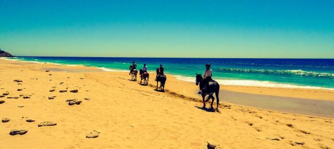 Horse riding – April 2014